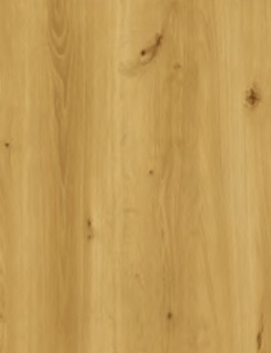 dub horský